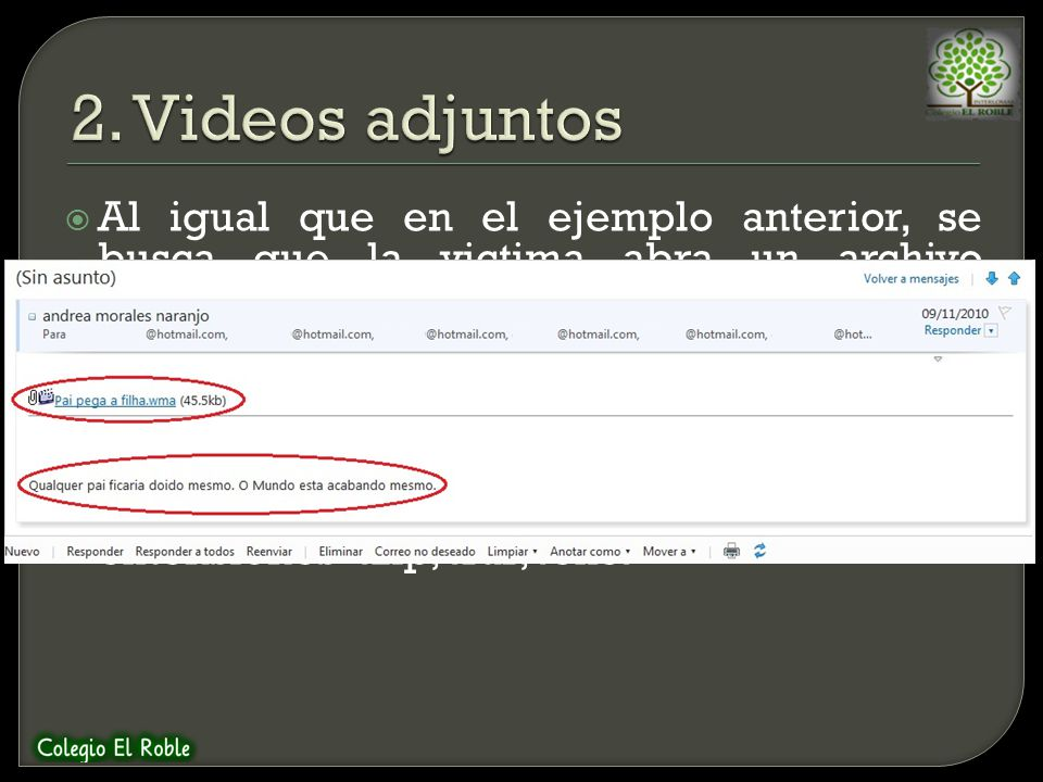 2. Videos adjuntos