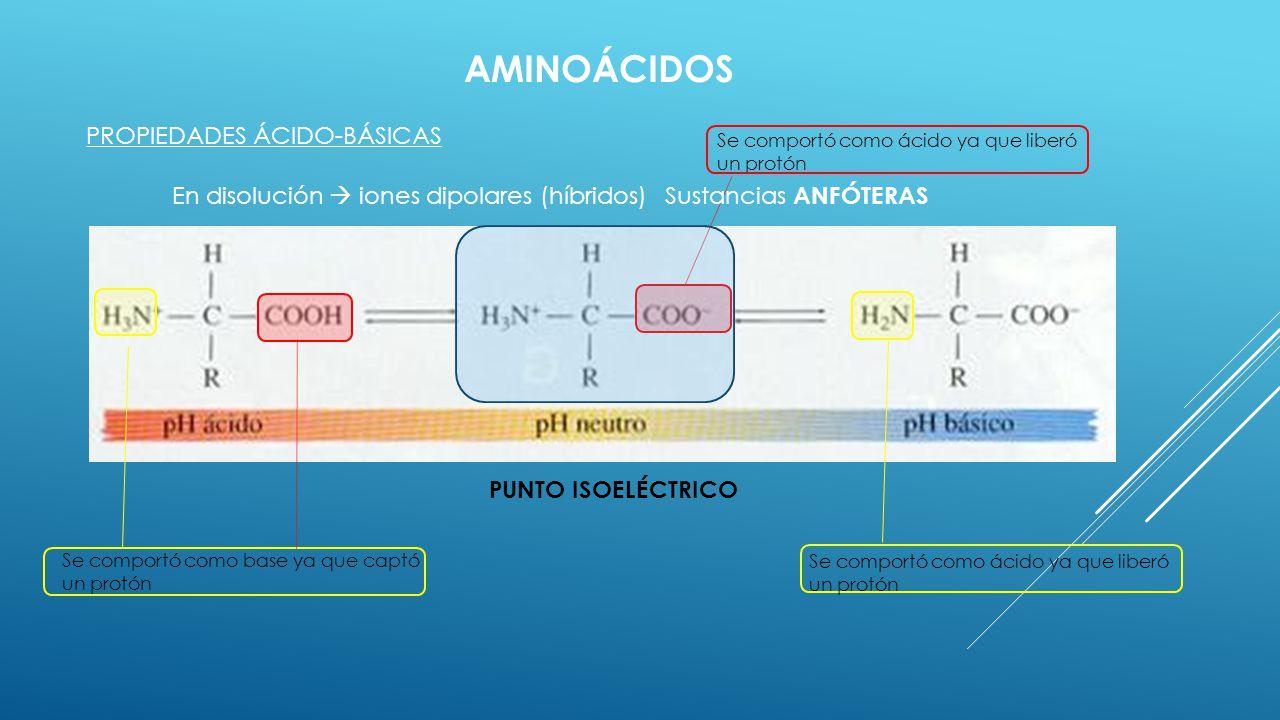 AMINOÁCIDOS PROPIEDADES ÁCIDO-BÁSICAS