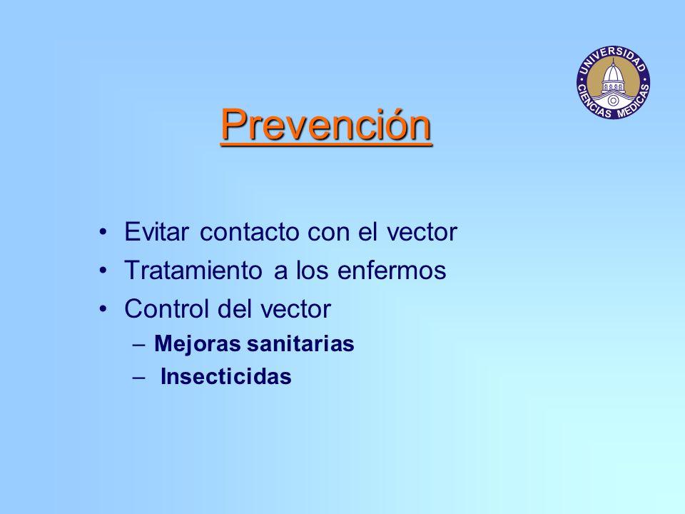 Prevención Evitar contacto con el vector Tratamiento a los enfermos