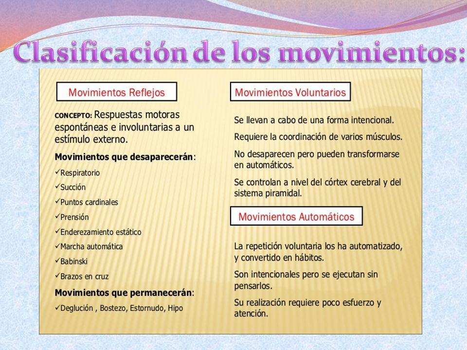 Clasificación de los movimientos: