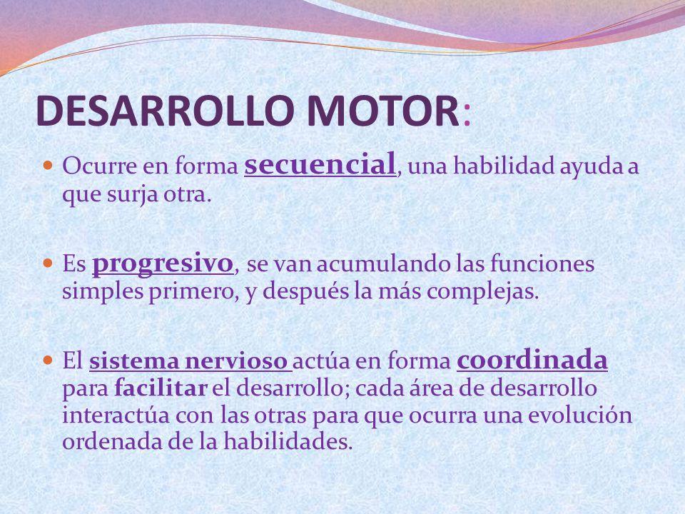 DESARROLLO MOTOR: Ocurre en forma secuencial, una habilidad ayuda a que surja otra.