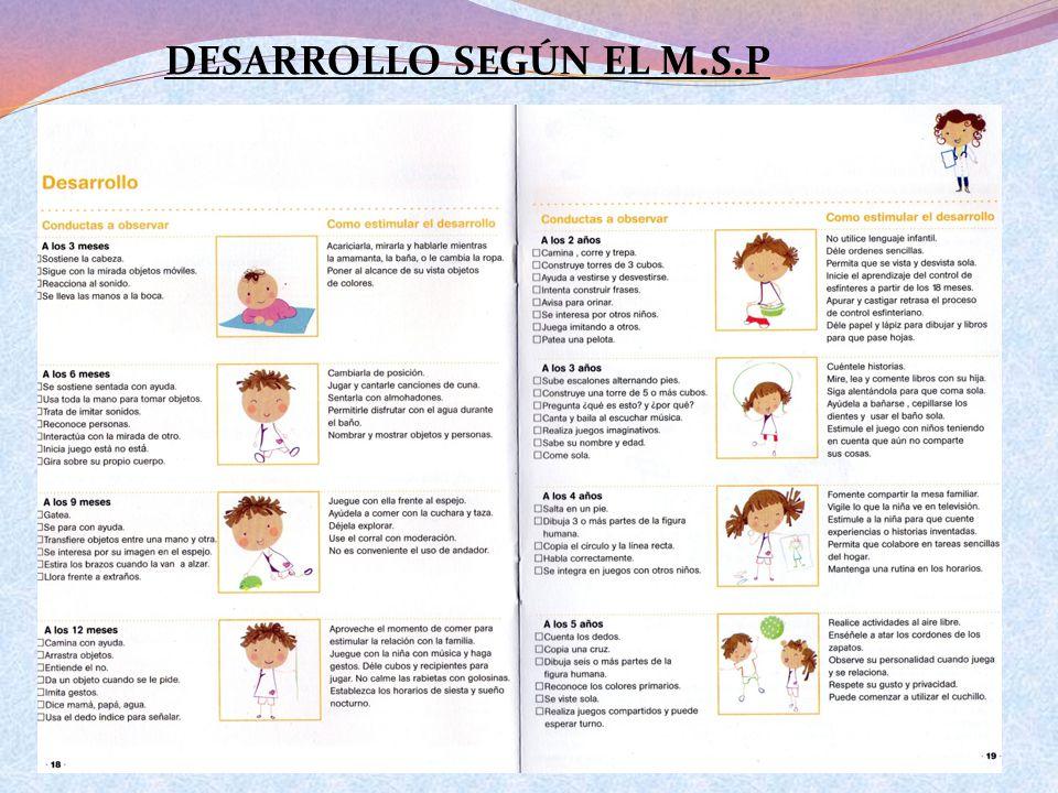 DESARROLLO SEGÚN EL M.S.P