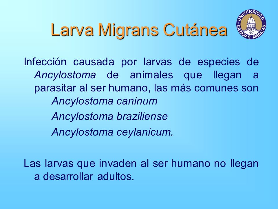 Larva Migrans Cutánea