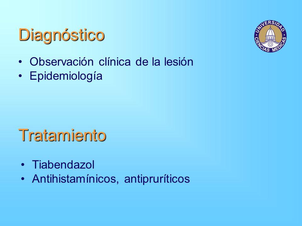 Diagnóstico Tratamiento Observación clínica de la lesión Epidemiología