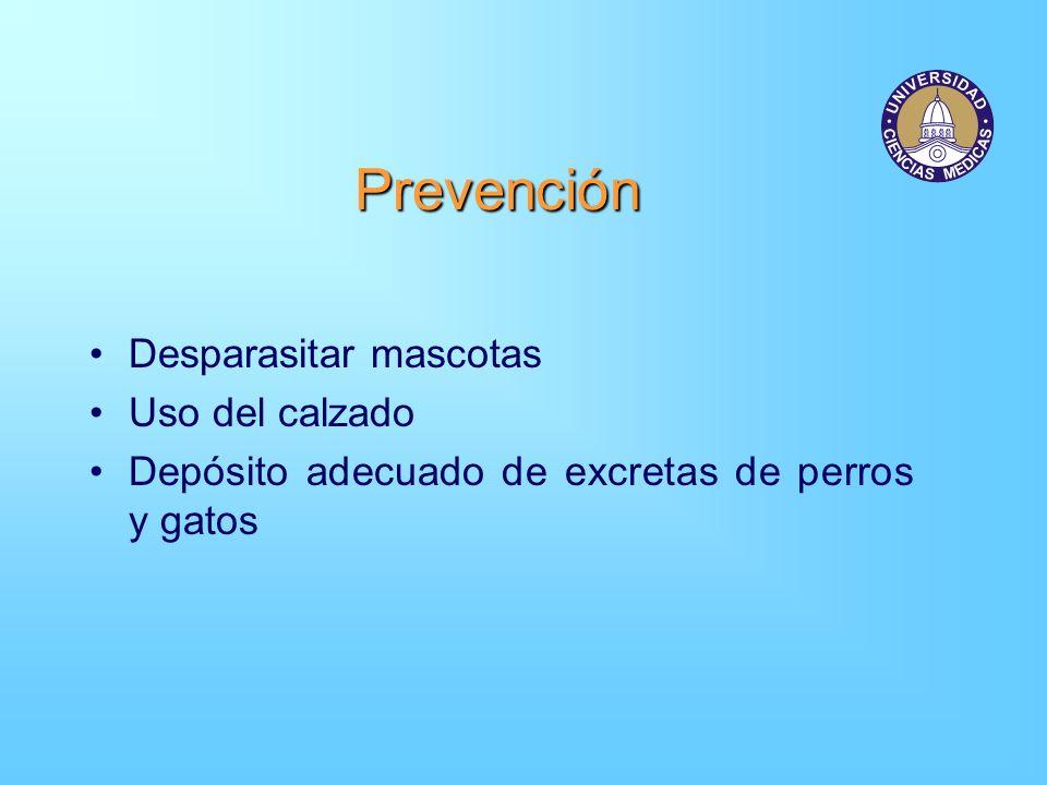 Prevención Desparasitar mascotas Uso del calzado