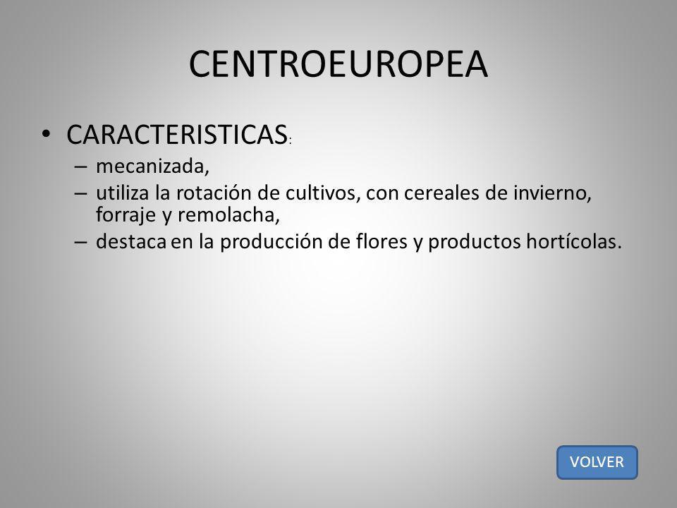 CENTROEUROPEA CARACTERISTICAS: mecanizada,