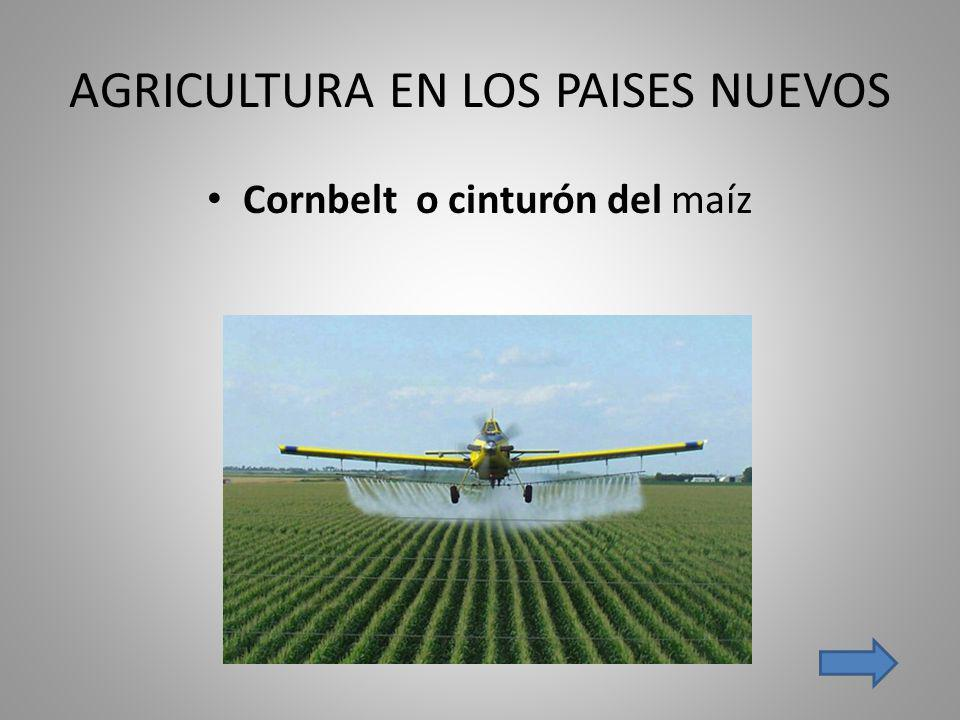 AGRICULTURA EN LOS PAISES NUEVOS