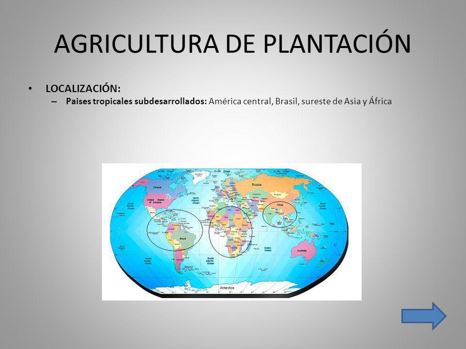 AGRICULTURA DE PLANTACIÓN