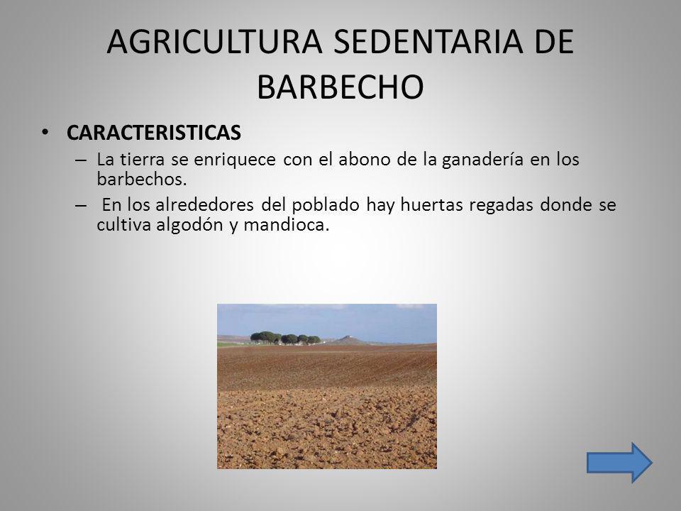 AGRICULTURA SEDENTARIA DE BARBECHO
