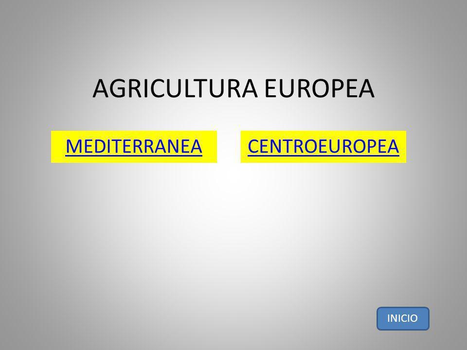 AGRICULTURA EUROPEA MEDITERRANEA CENTROEUROPEA INICIO