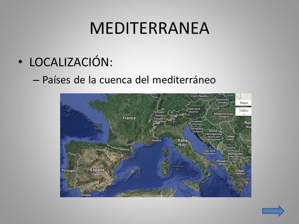 MEDITERRANEA LOCALIZACIÓN: Países de la cuenca del mediterráneo