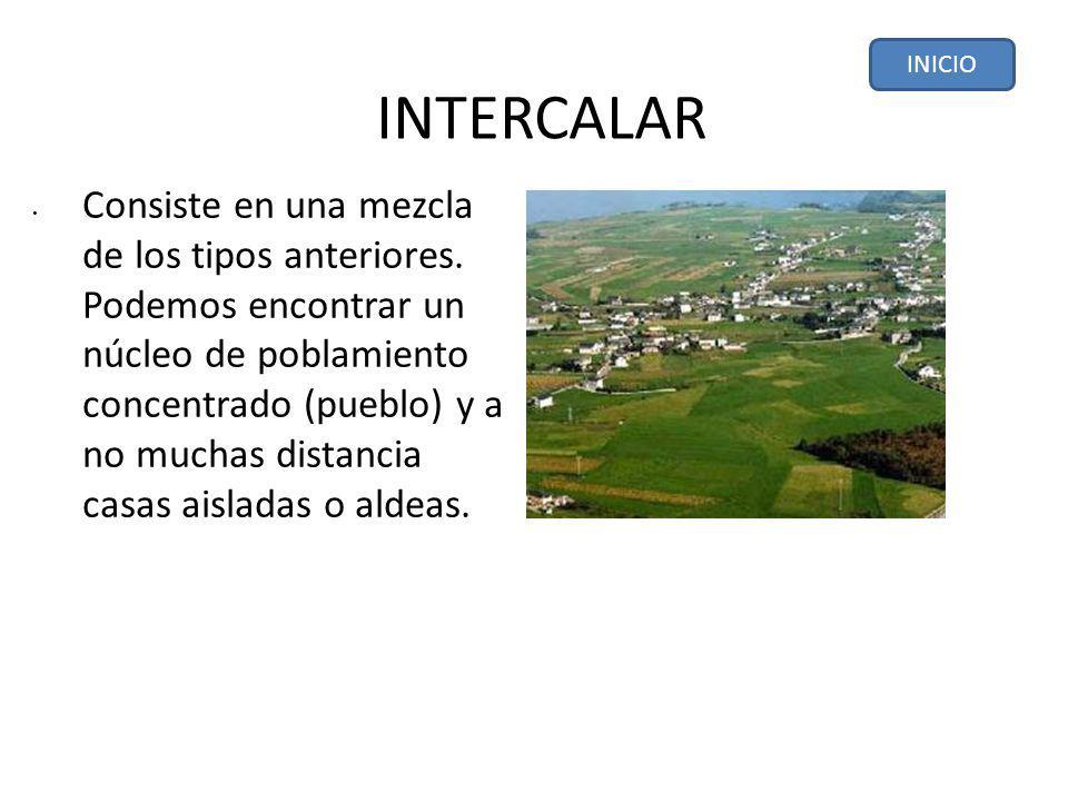 INTERCALAR Consiste en una mezcla de los tipos anteriores.