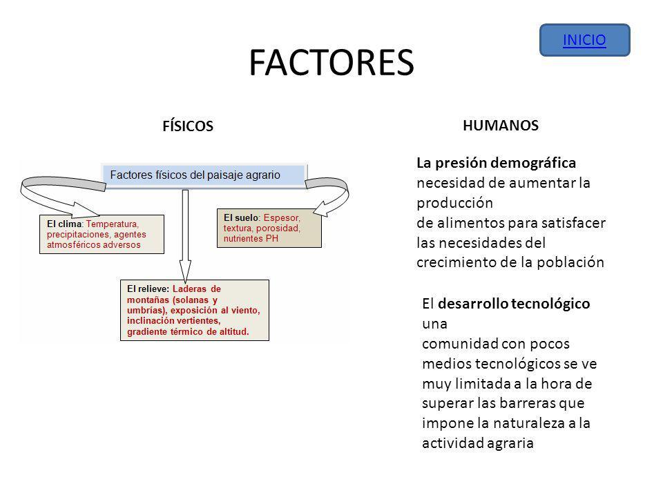 FACTORES INICIO FÍSICOS HUMANOS La presión demográfica