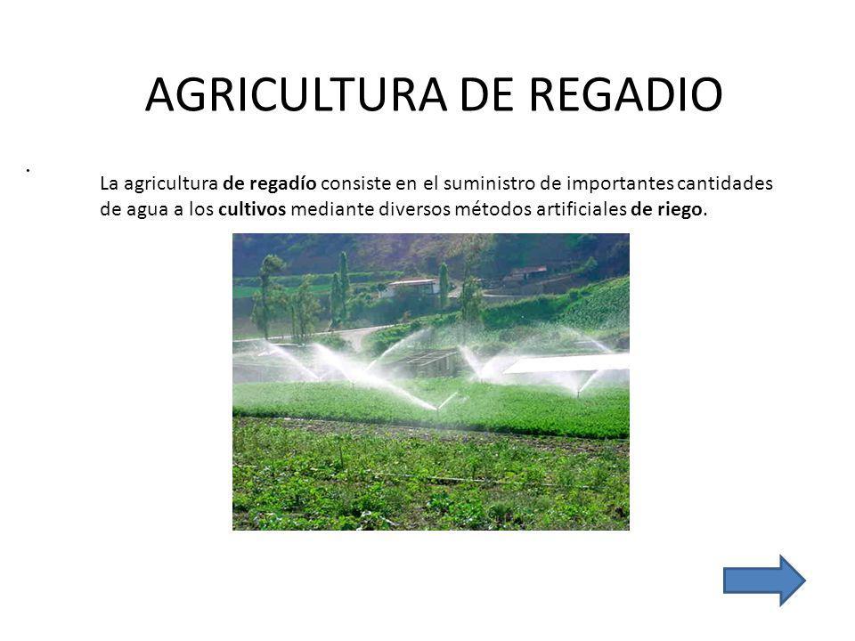 AGRICULTURA DE REGADIO