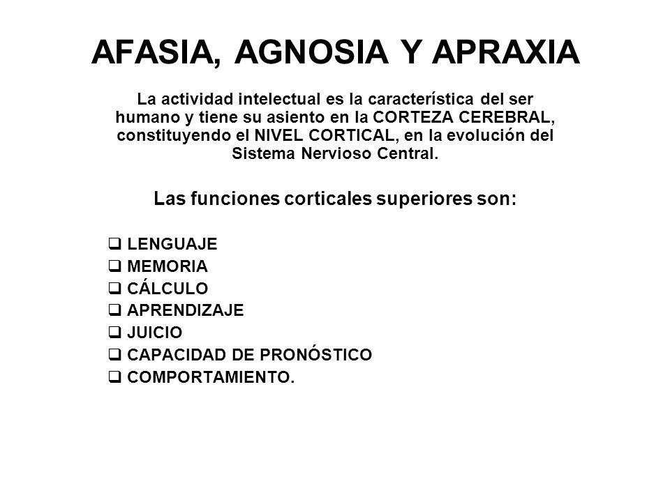 AFASIA, AGNOSIA Y APRAXIA