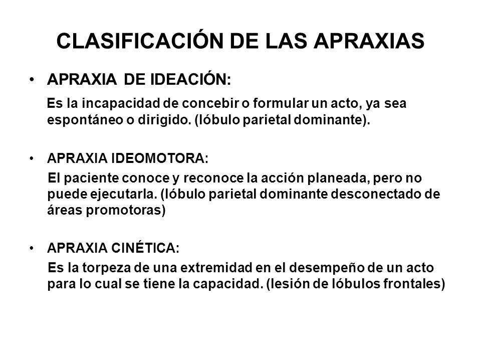 CLASIFICACIÓN DE LAS APRAXIAS