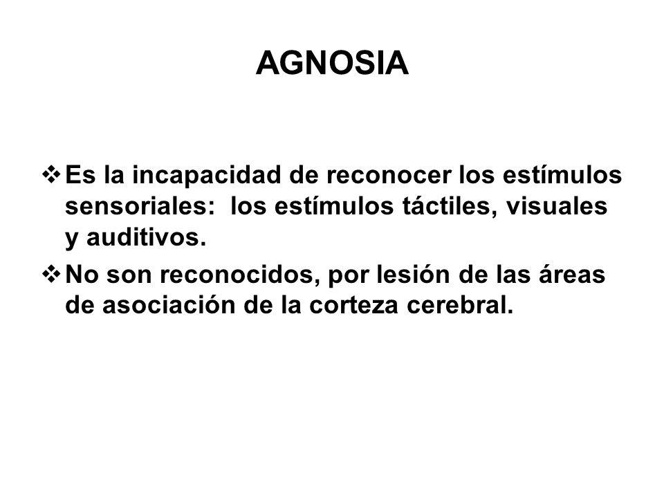 AGNOSIA Es la incapacidad de reconocer los estímulos sensoriales: los estímulos táctiles, visuales y auditivos.