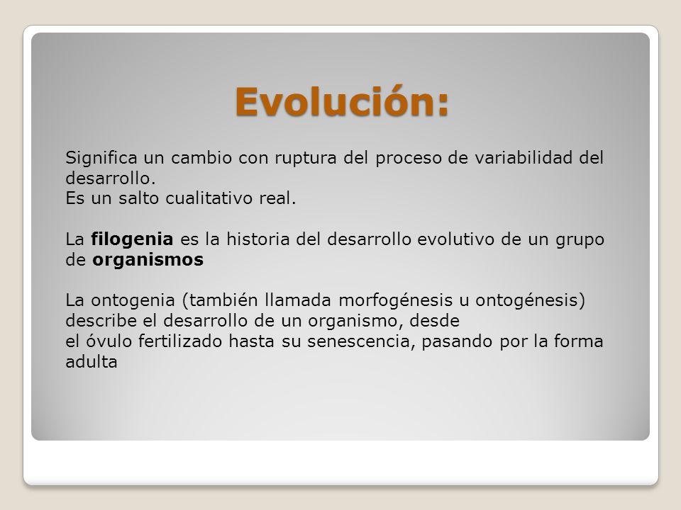 Evolución: Significa un cambio con ruptura del proceso de variabilidad del desarrollo. Es un salto cualitativo real.