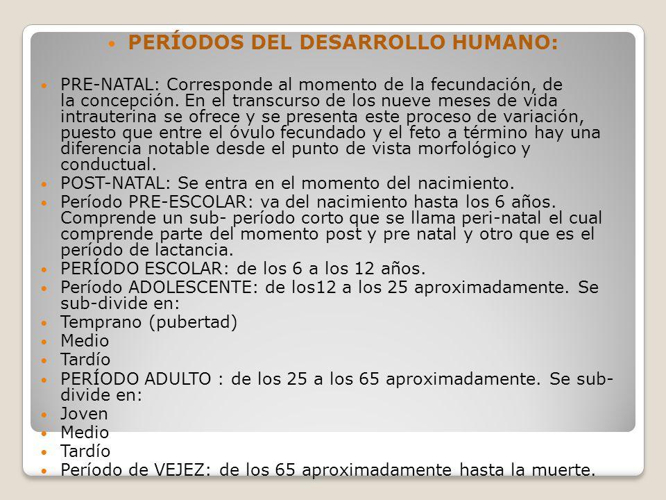 PERÍODOS DEL DESARROLLO HUMANO: