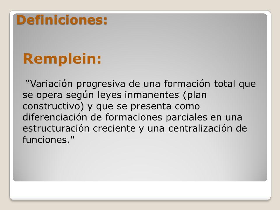 Remplein: Definiciones: