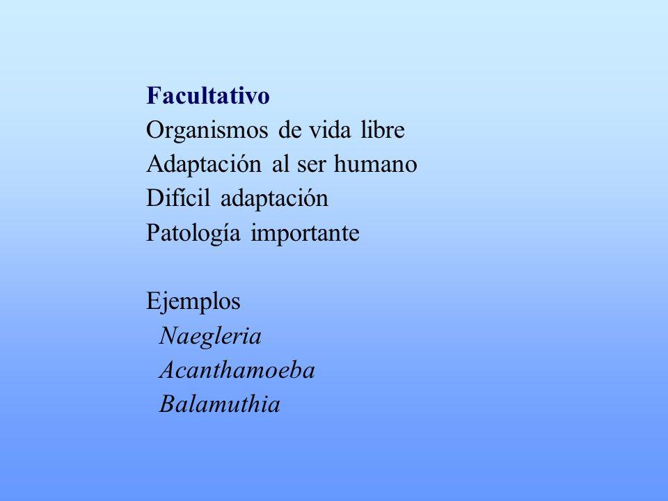 Facultativo Organismos de vida libre. Adaptación al ser humano. Difícil adaptación. Patología importante.