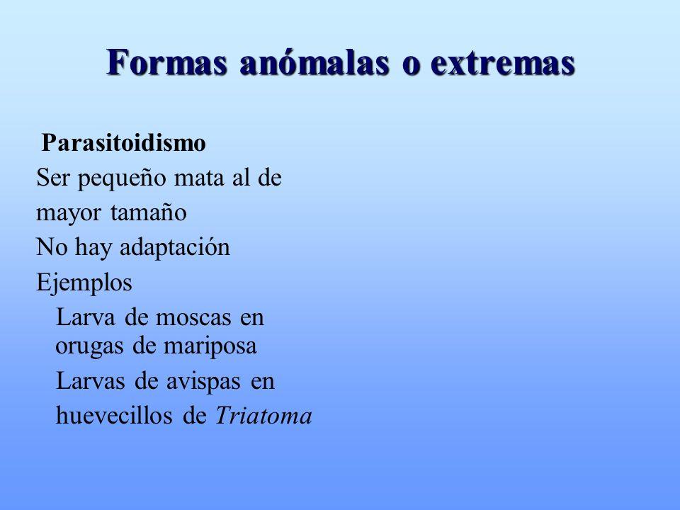 Formas anómalas o extremas