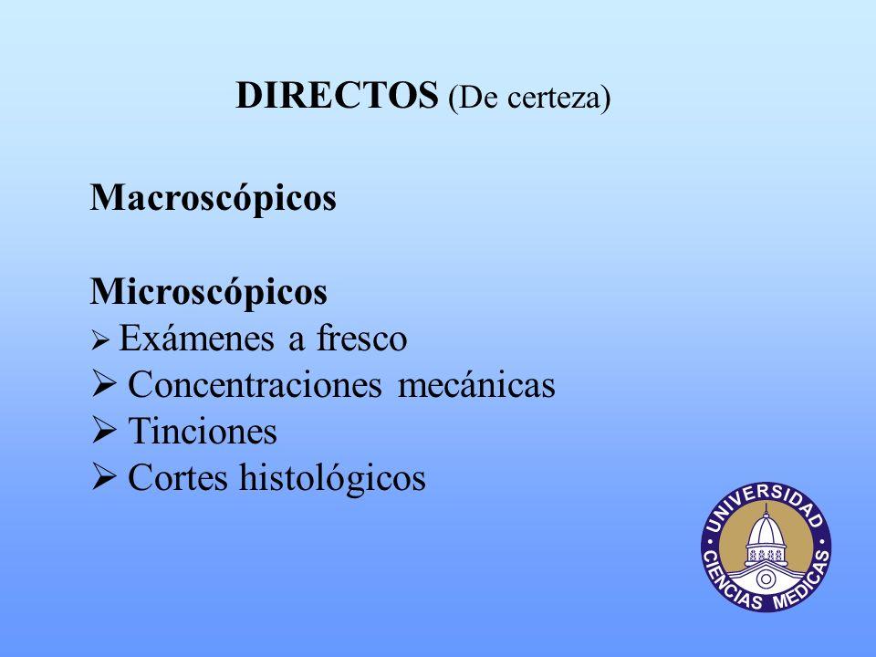 Concentraciones mecánicas Tinciones Cortes histológicos