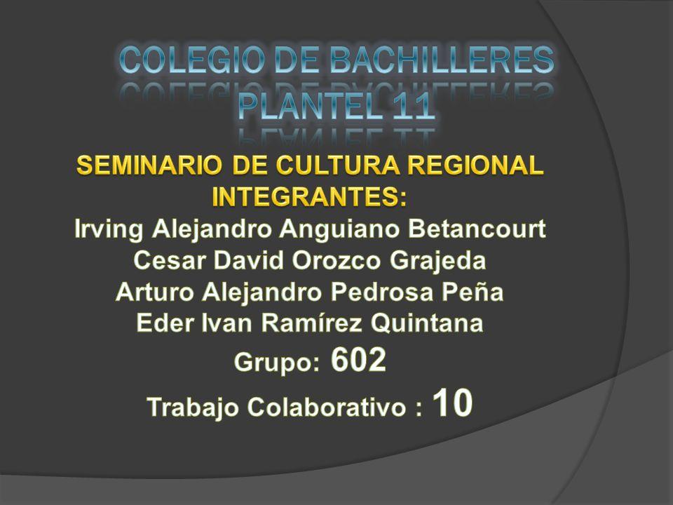 COLEGIO DE BACHILLERES PLANTEL 11