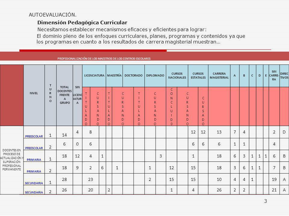 PROFESIONALIZACIÓN DE LOS MAESTROS DE LOS CENTROS ESCOLARES