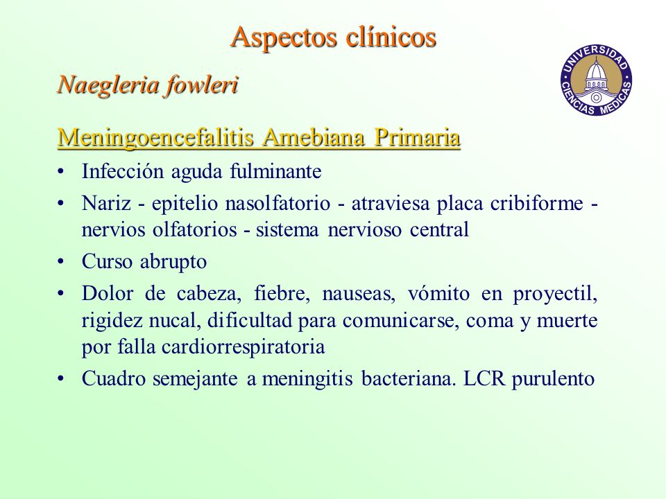 Aspectos clínicos Naegleria fowleri