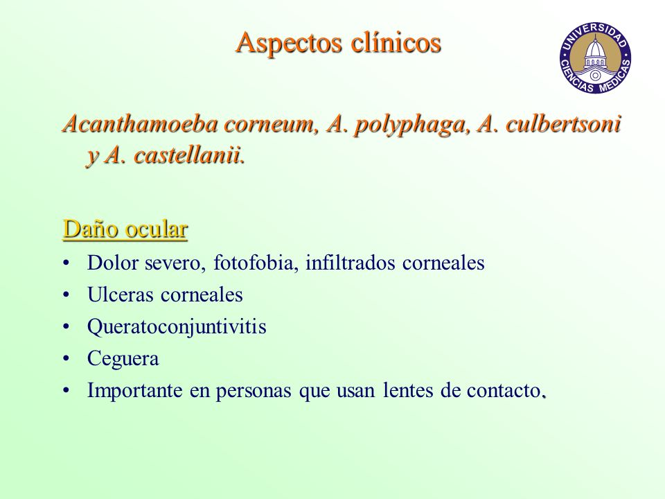 Aspectos clínicosAcanthamoeba corneum, A. polyphaga, A. culbertsoni y A. castellanii. Daño ocular. Dolor severo, fotofobia, infiltrados corneales.