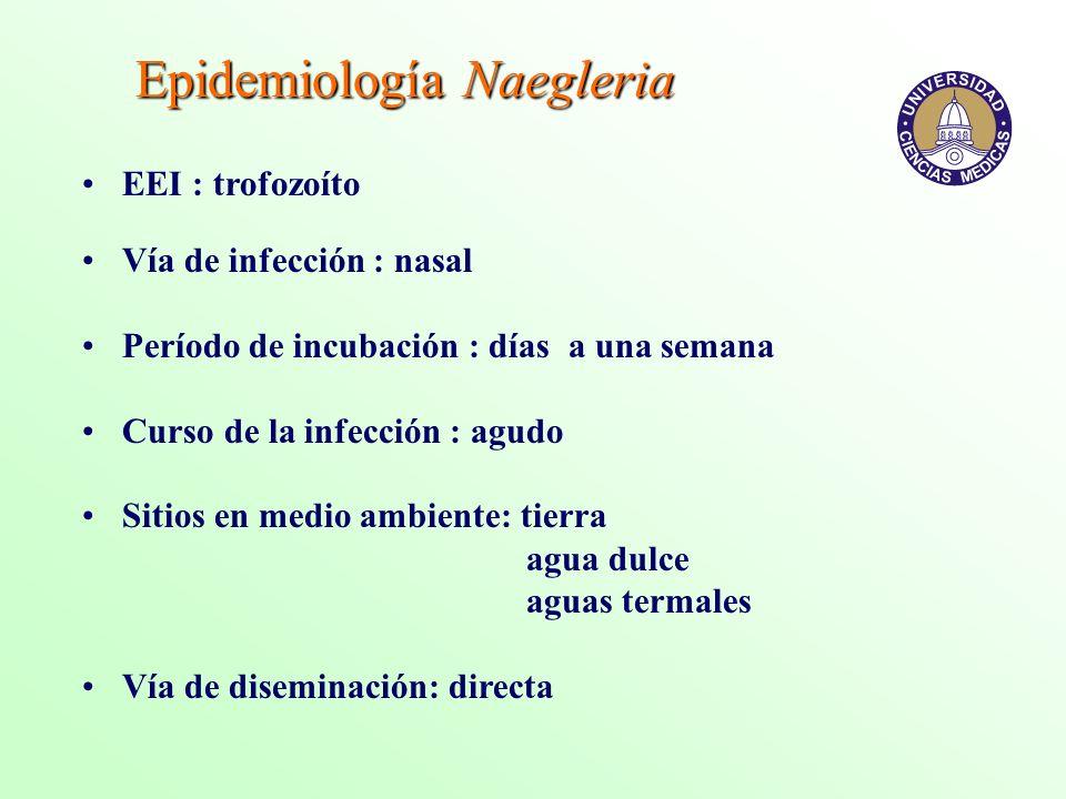 Epidemiología Naegleria
