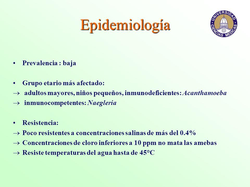 Epidemiología Prevalencia : baja Grupo etario más afectado: