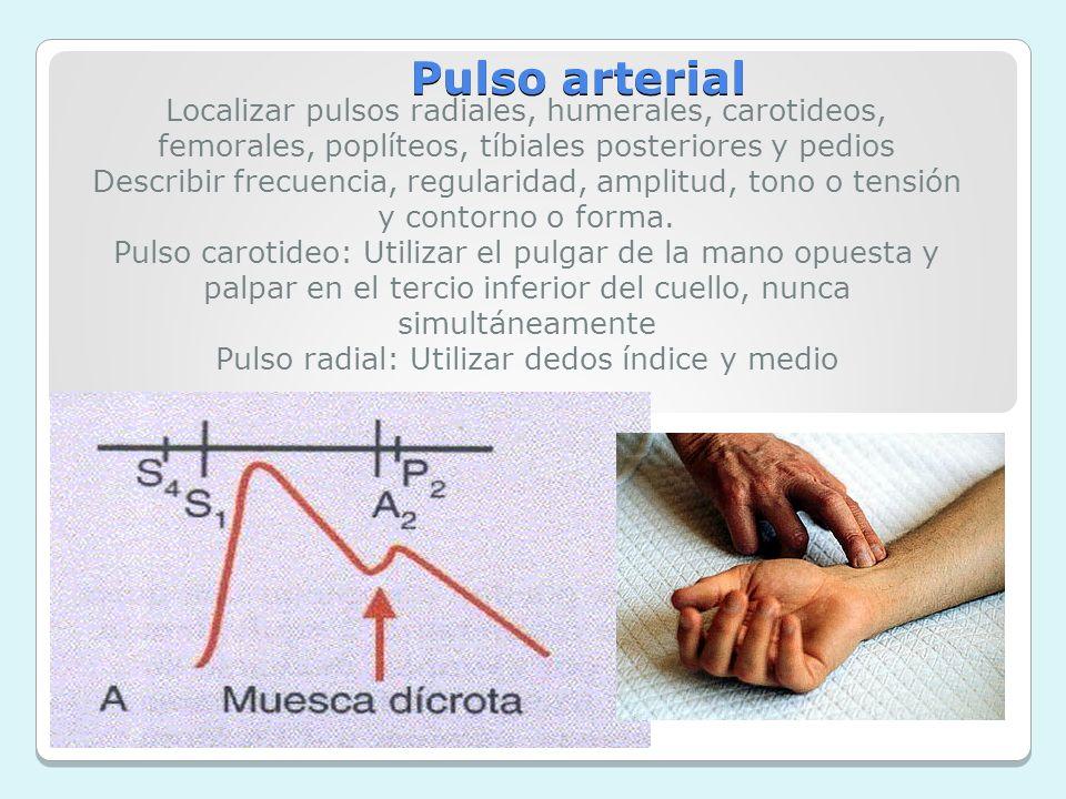 Pulso radial: Utilizar dedos índice y medio