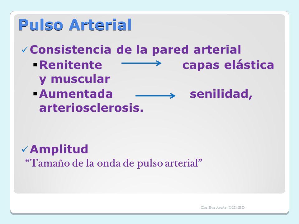 Pulso Arterial Consistencia de la pared arterial