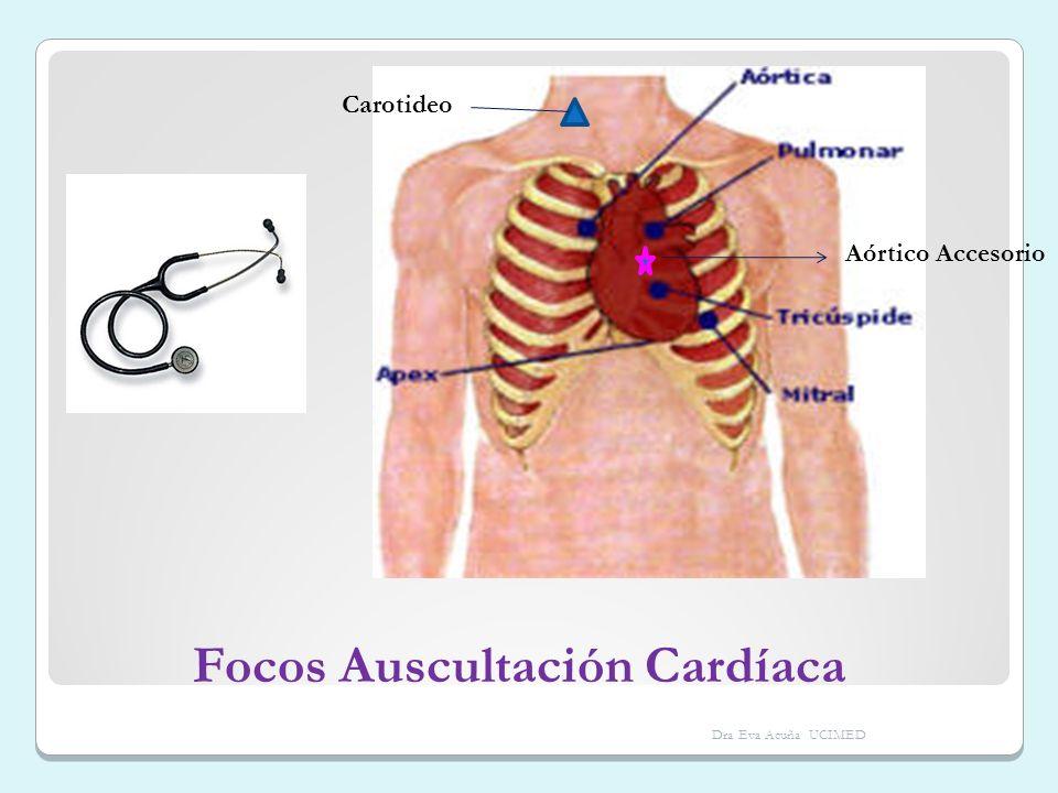 Focos Auscultación Cardíaca
