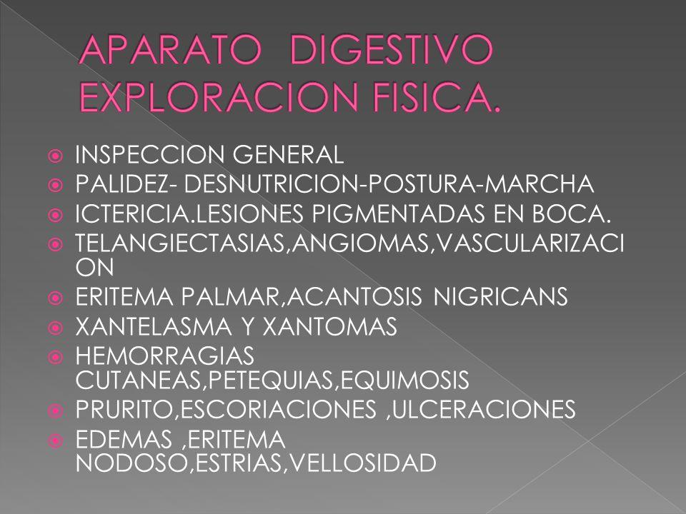 APARATO DIGESTIVO EXPLORACION FISICA.