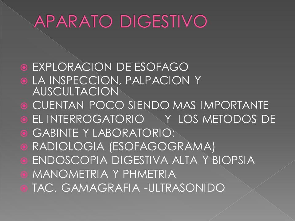 APARATO DIGESTIVO EXPLORACION DE ESOFAGO