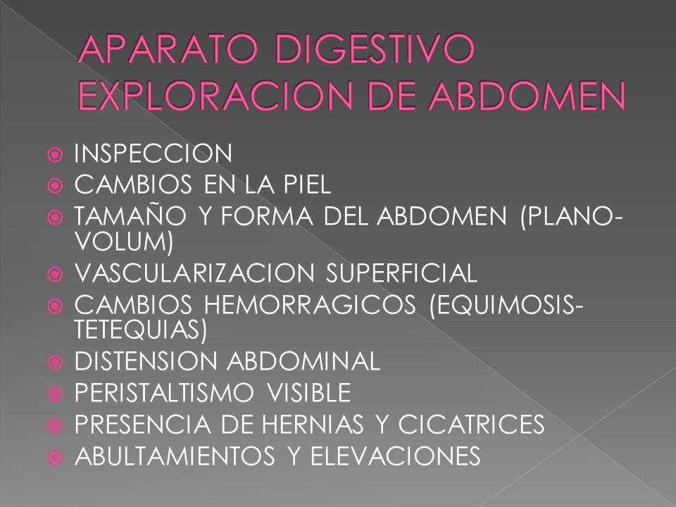 APARATO DIGESTIVO EXPLORACION DE ABDOMEN