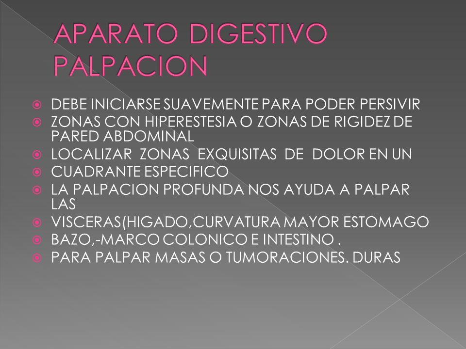 APARATO DIGESTIVO PALPACION