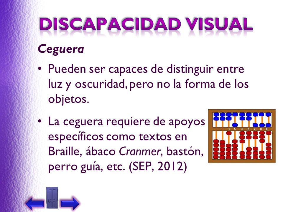 DISCAPACIDAD VISUAL Ceguera