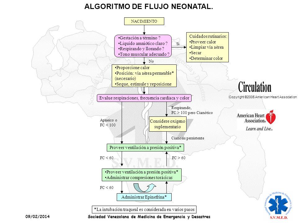 ALGORITMO DE FLUJO NEONATAL.