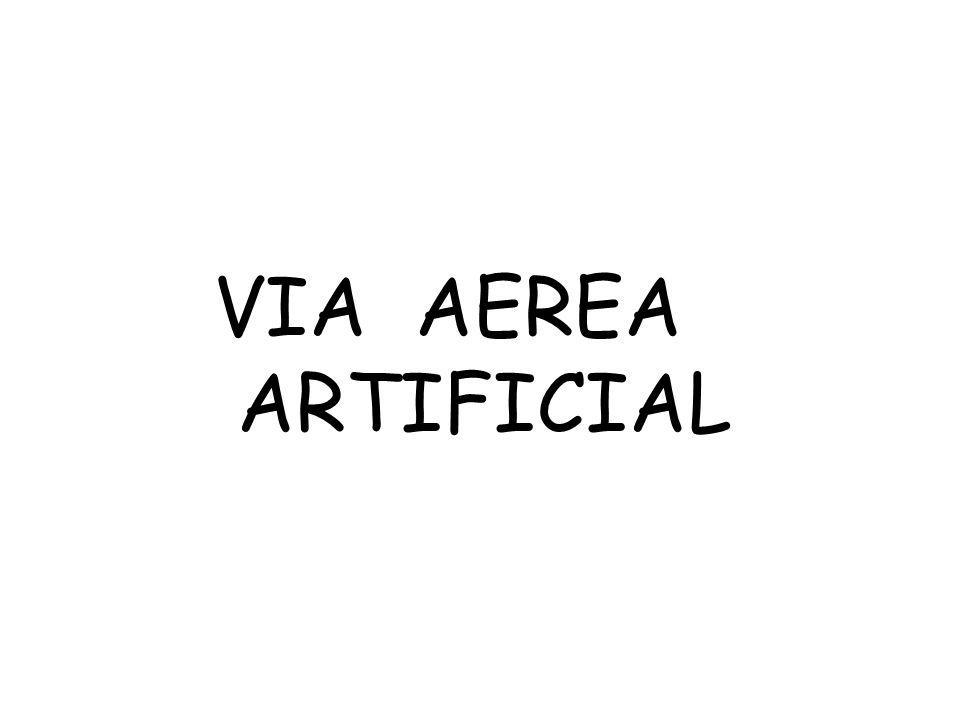 VIA AEREA ARTIFICIAL