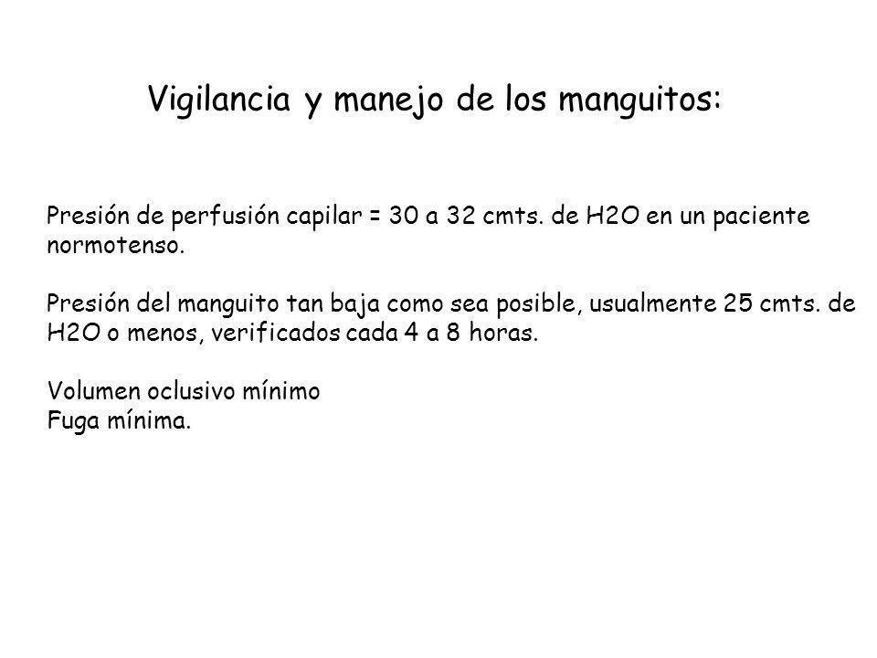 Vigilancia y manejo de los manguitos:
