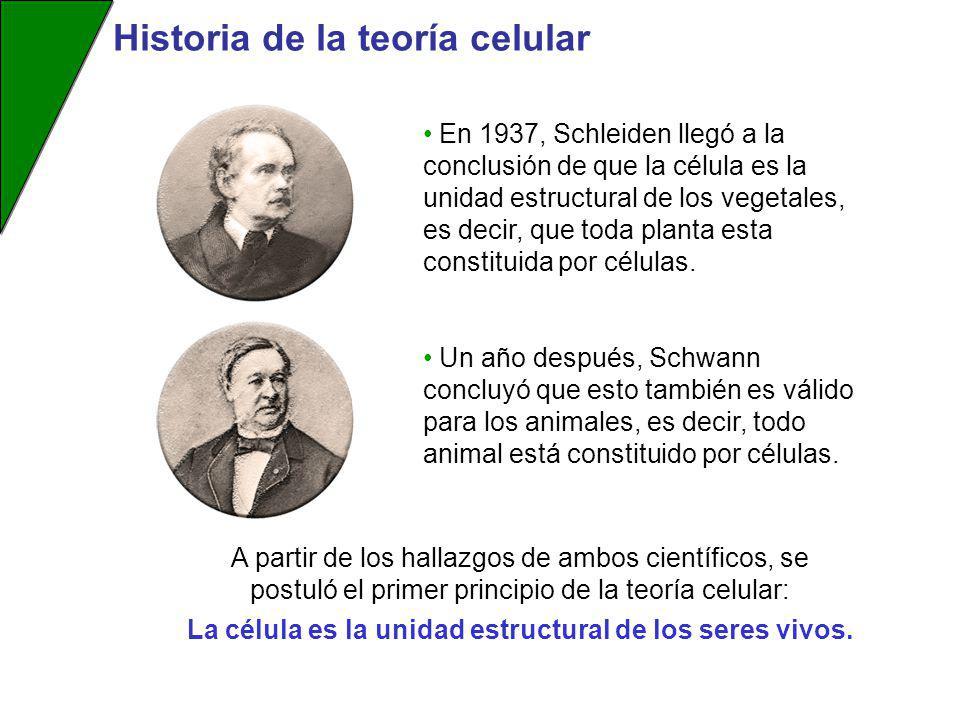 La célula es la unidad estructural de los seres vivos.