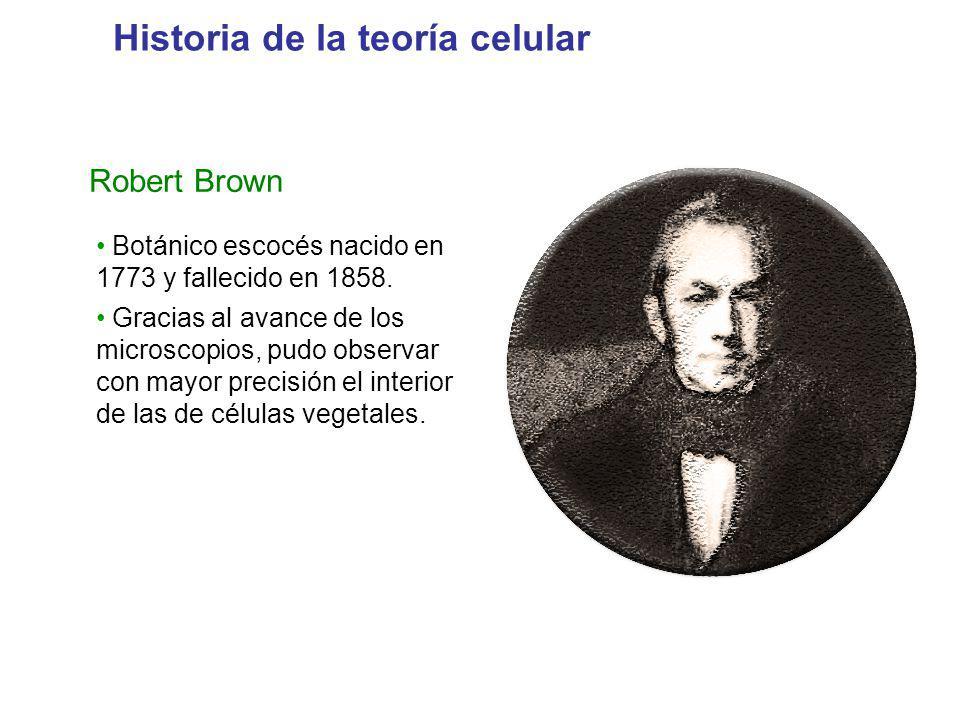 Historia de la teoría celular