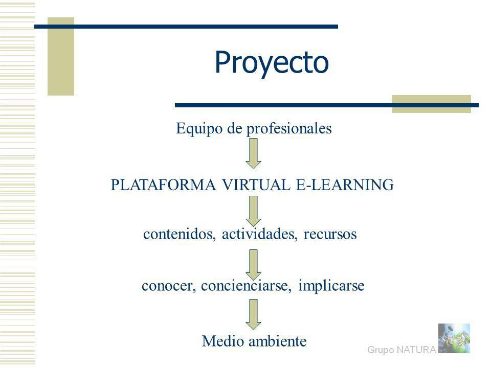 Proyecto Equipo de profesionales PLATAFORMA VIRTUAL E-LEARNING