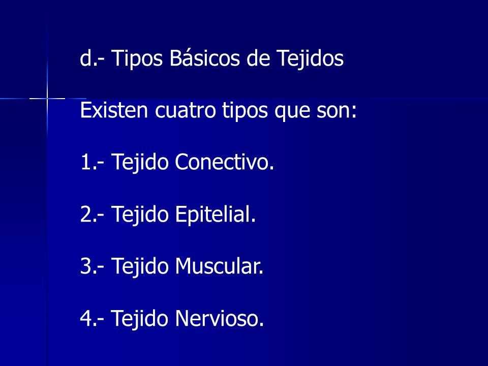 d.- Tipos Básicos de Tejidos