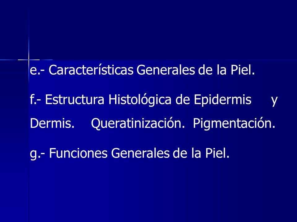 e.- Características Generales de la Piel.