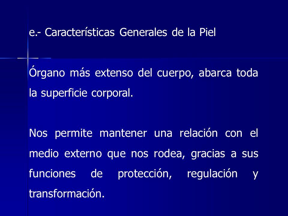 e.- Características Generales de la Piel